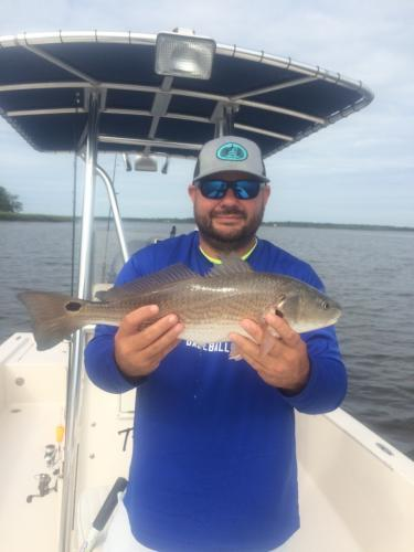 fly fishing for reds beaufort