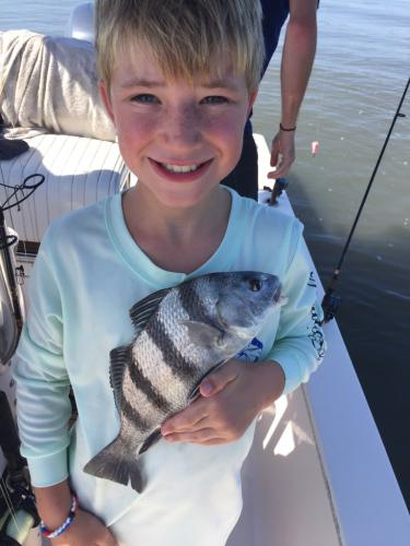 sheepshead fishing beaufort sc